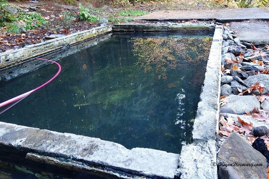 Lower Breitenbush Hot Springs - Oregon