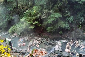 Cougar Hot Springs