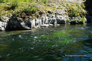 Keenig Creek – Wilson River
