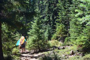 Buck Lake Trail