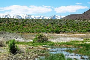 Mickey Hot Springs, Steens Mountain