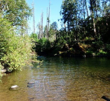 Fall Creek - Clark Creek