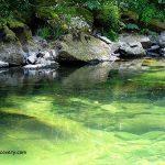 Quartzville Creek Swimming