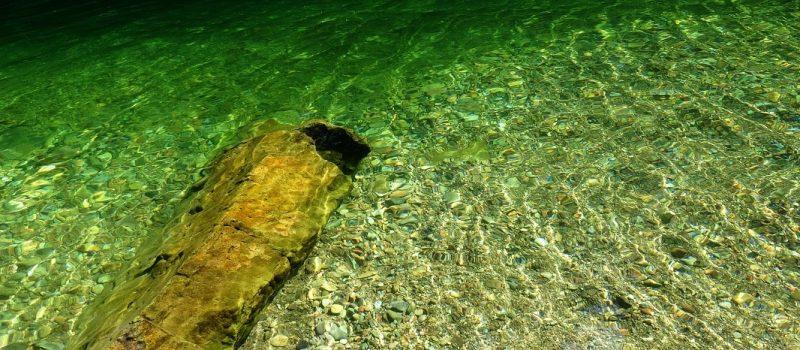 Yellowbottom Swimming – Quartzville Creek