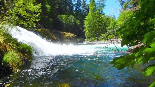Salmon Creek Falls Swimming – Oakridge