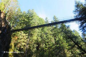 Drift Creek Falls, Suspension Bridge