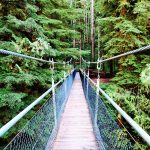 Drift Creek Falls, Suspension Bridge