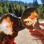 Thundereggs Oregon