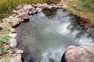 Barnes Warm Springs | Frenchglen Warm Springs