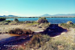 Borax Hot Springs & Borax Lake