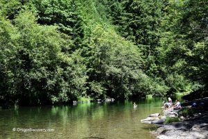 Bear Creek - North Fork Santiam River