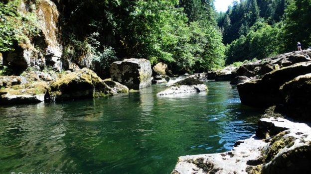 Scenic Fall Creek Corridor – Willamette National Forest