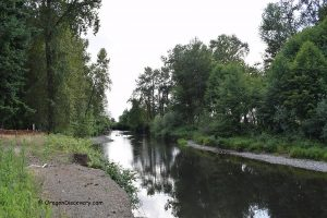 Pioneer Park - Calapooia River