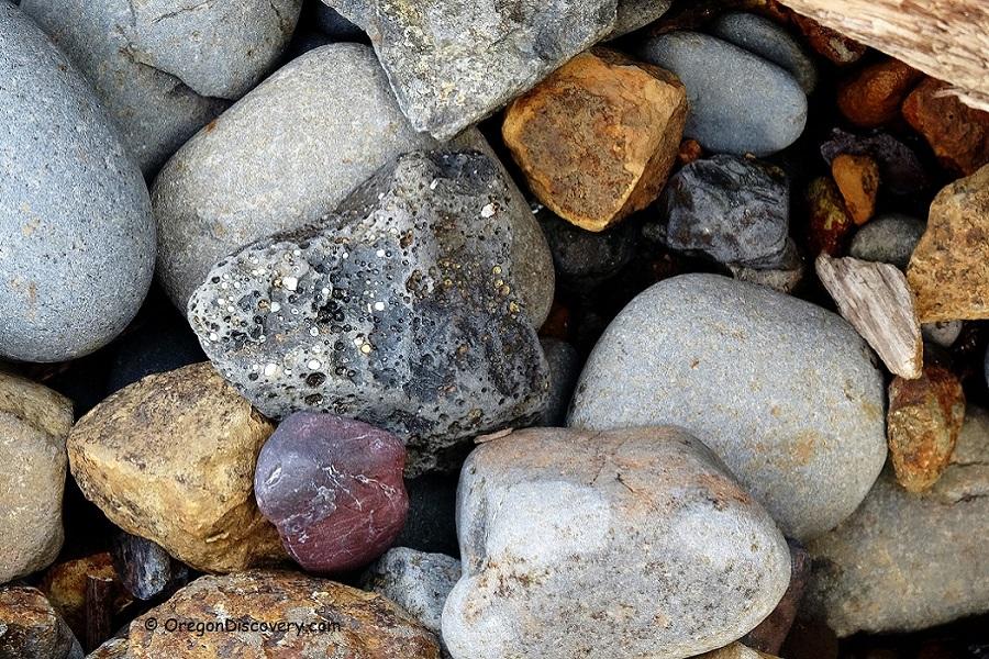 Short Beach Rockhounding - Beachcombing
