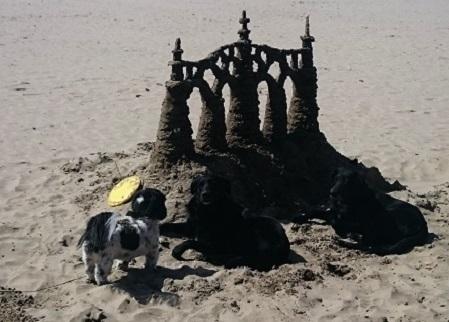 Taft Beach Sandcastle Contest – Lincoln City