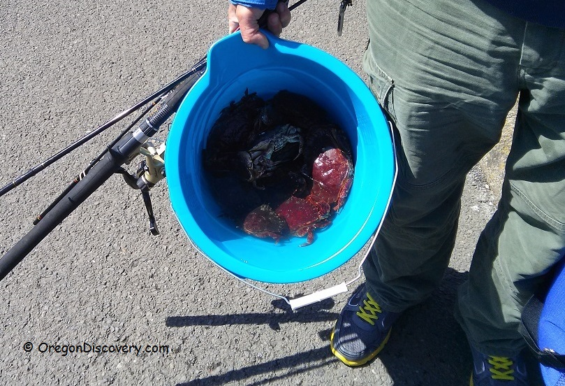 Crabbing Amp Clamming Clinics Lincoln City Oregon Discovery