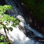 Drake Falls - Silver Falls State Park