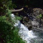 Twin Falls - Silver Falls State Park