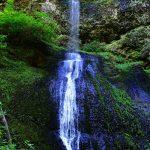 Winter Falls - Silver Falls State Park