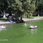 Lake Billy Chinook Swimming