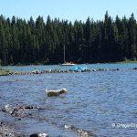 Cultus Lake Swimming