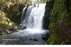 Majestic Falls - McDowell Creek  Park