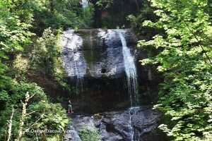 Royal Terrace Falls -  McDowell Creek Falls Park