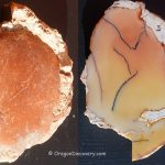 White Fir Springs Jasper Thundereggs