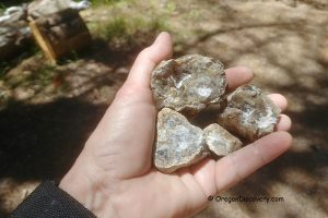 White Rock Springs Thundereggs