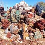 Petersen Rock Garden