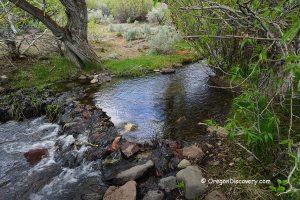 Pike Creek Oregon