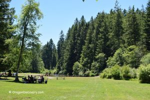 Swimming and Picniking Area - Silver Falls