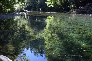 Elk River Swimming - Sunshine Bar Campground