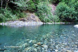 Elk River Swimming
