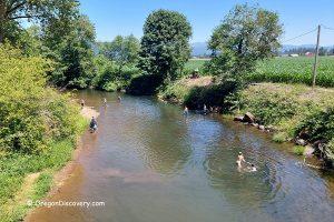 Thomas Creek - Swimming