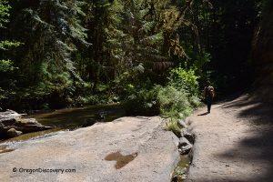 Wolf Creek Falls Trail - Oregon