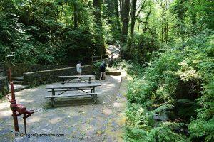 Cascadia State Park - Soda Spring Site