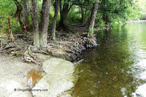 Crowfoot Falls Swimming near Medford