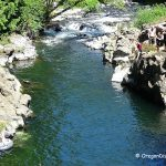 Trask River County Park - Oregon