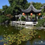Lan Su Chinese Garden in Old Town